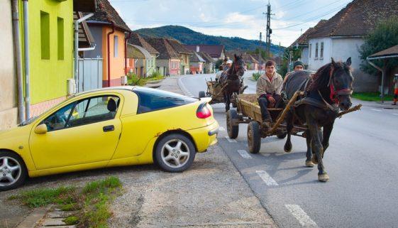 Kollision zwischen Bus und geführtem Reitpferd - Haftungsanteil des Tierhalters