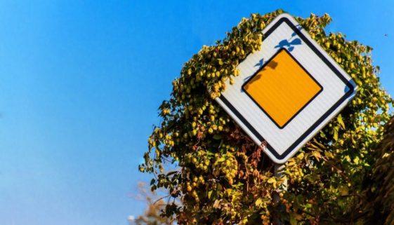 Vorfahrtsrecht beim Verlassen einer abknickenden Vorfahrtsstraße in Geradeausfahrt